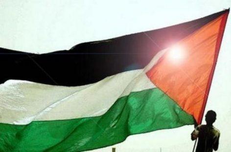 Palestina, ¿nuevo Estado de la ONU?