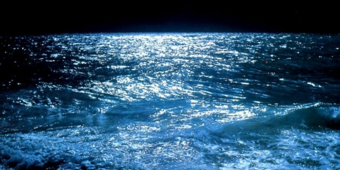 La brisa que viene del mar