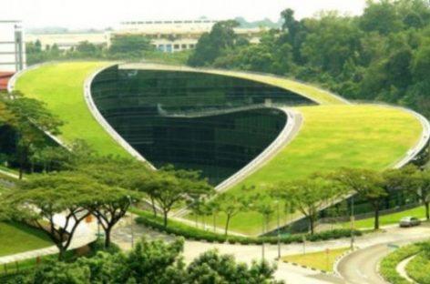Crecimiento verde, una solución económica