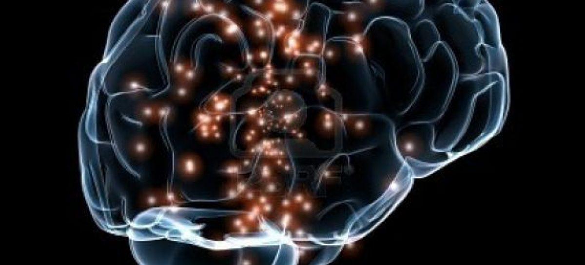 Cerebro mantener activo el