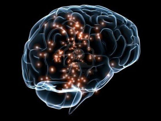 Mantener el cerebro activo para mantenerse joven