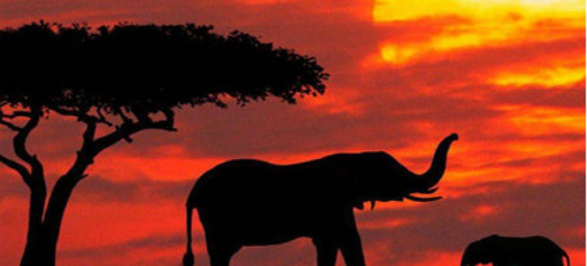 """""""Triland"""", un paraíso turístico africano sin fronteras"""