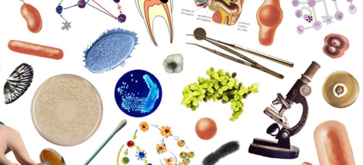 Avances contra enfermedades infecciosas