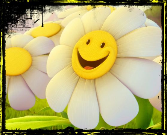 Felicidad, aprender a compartirla