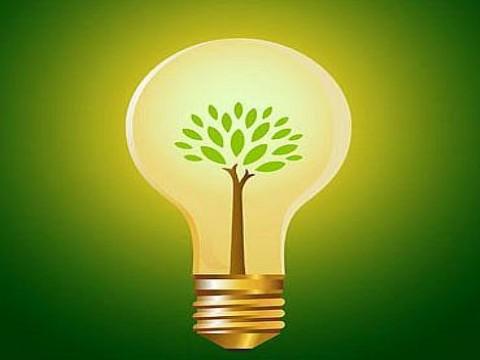 Negocios ecológicos para salvarse de la crisis