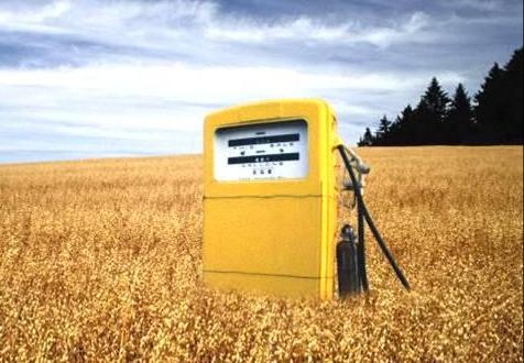 Biocombustibles, una oportunidad para la agricultura