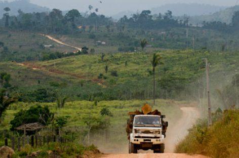 La deforestación del Amazonas va a la baja