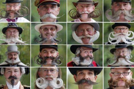 Campeonato europeo de bigotes