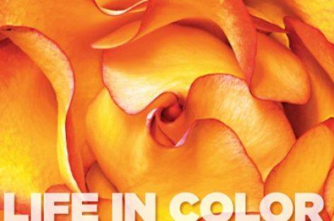 """""""Life of color"""", lo nuevo de National Geographic"""