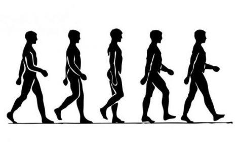 Más ejercicios, más esperanza de vida
