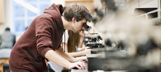 Los grandes avances de la ciencia en el 2012
