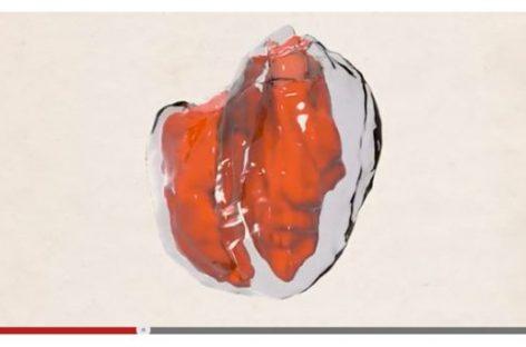 Cómo funciona el corazón a través de un video