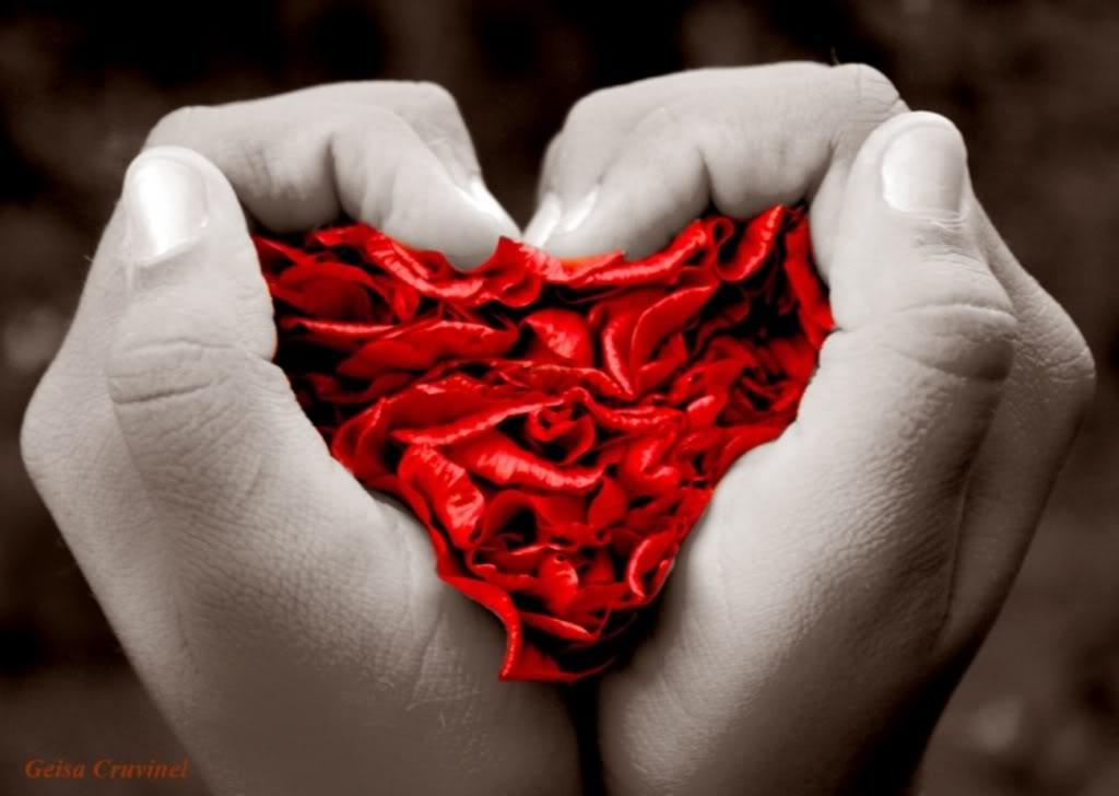 amor-que es el amor-corazon-manos-definicion de amor-muestra de amor