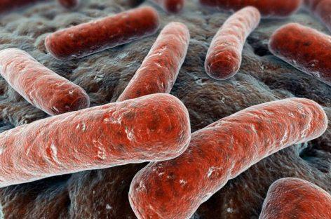 La Tuberculosis se puede curar con ibuprofeno y Aspirina