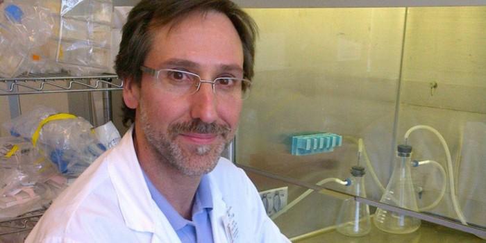 Inmunoterapia, un salto cualitativo en la lucha contra el cáncer