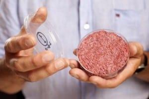 carne sintetica-alimentacion
