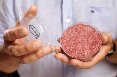 Carne sintética, una solución a la crisis alimentaria
