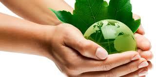mundo entre las manos-mundo verde-mundo mas justo