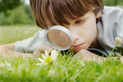 El contacto con la naturaleza refuerza la salud de los niños