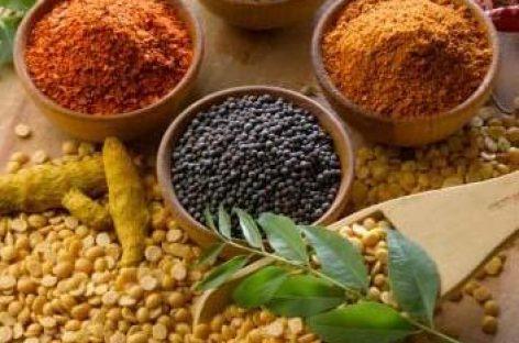 Alimentos medicinales que refuerzan nuestro sistema inmunológico