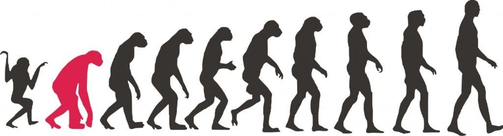 evolucion-humanos-evolucion humana-guerrras