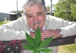 Marihuana a 1 dólar en Uruguay