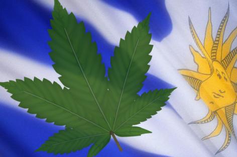Marihuana, legalizada en Uruguay