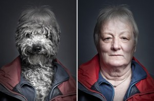 perro 3-senioras y peros