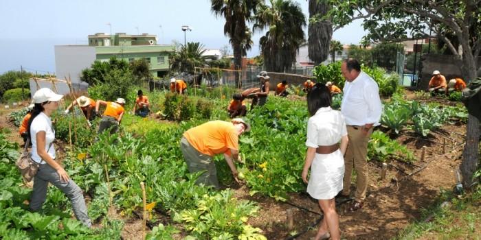 La agricultura ecológica: garantía de los alimentos saludables