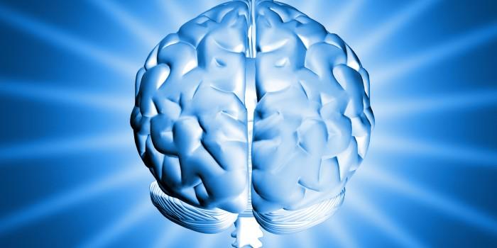 Cerebro, entrenarlo aumenta la calidad de vida
