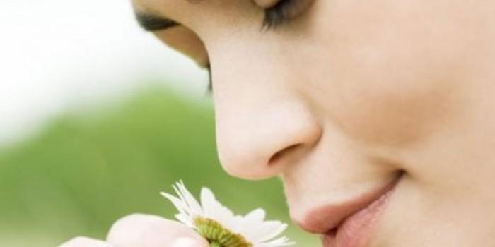 Alzheimer, estudiar el olfato para prevenirlo