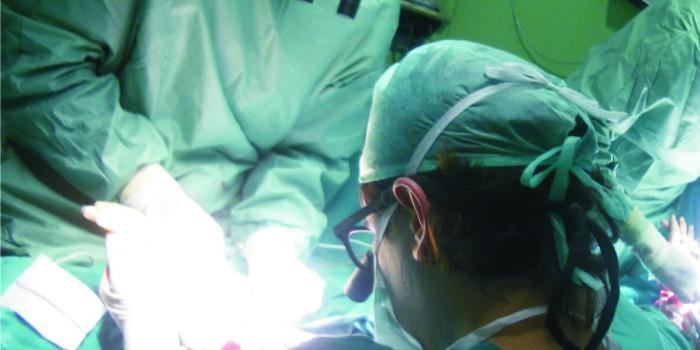 España bate su propio récord de trasplantes de órganos en un día