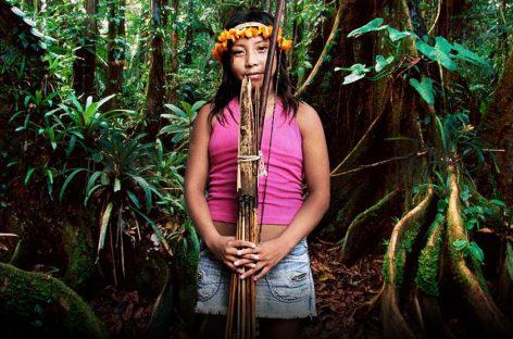 Victoria para los indígenas Awá en la amazonía brasileña
