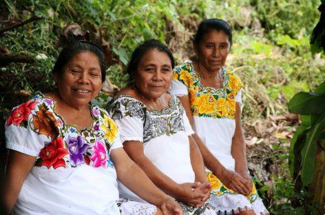 Monsanto, los indígenas Mayas le ganan la batalla