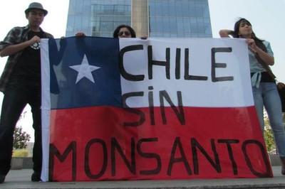 Ley Monsanto, campesinos latinoamericanos contra la privatización de las semillas