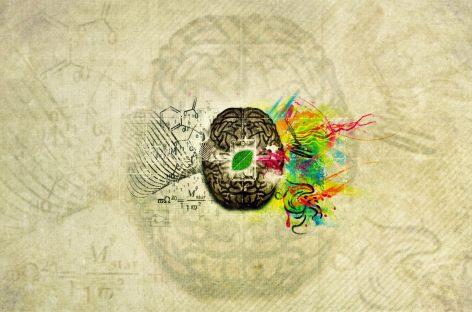 Los misterios del cerebro, ese gran desconocido
