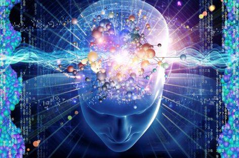 Inteligencia emocional, su papel decisivo para alcanzar el éxito