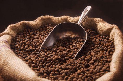 Cultura del café: más allá de su uso convencional