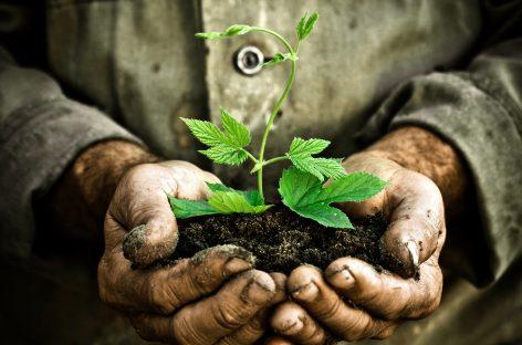 Día Mundial del Medioambiente, salvar nuestro planeta tierra