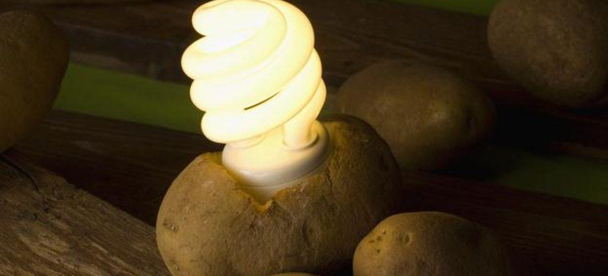 Las patatas como fuentes de energía