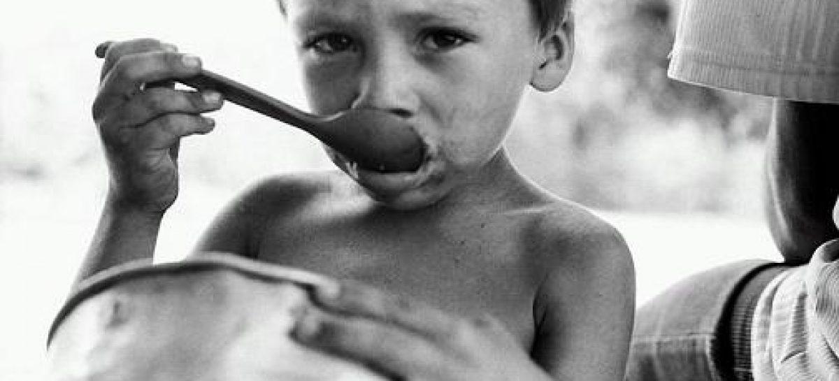 Soluciones para la malnutrición