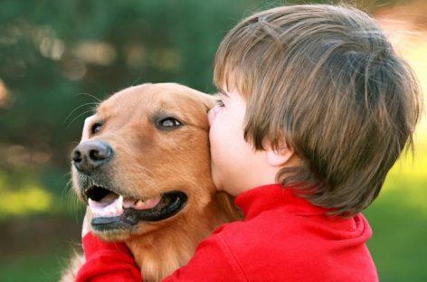 Los beneficios de la terapia asistida con animales