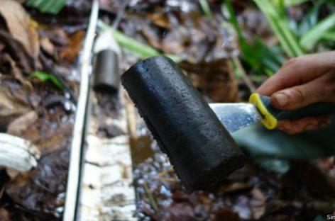 El Congo, rincón de un nuevo hallazgo natural