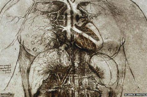 Las importantes contribuciones de Da Vinci sobre el corazón
