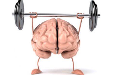 Algunos consejos para mantener en forma nuestro cerebro