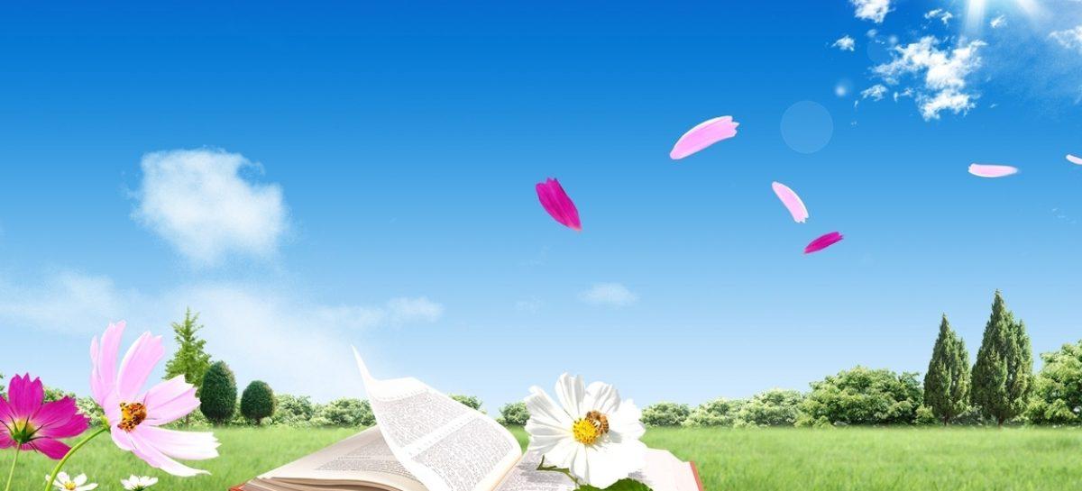 Biblioterapia: el poder curativo de los libros