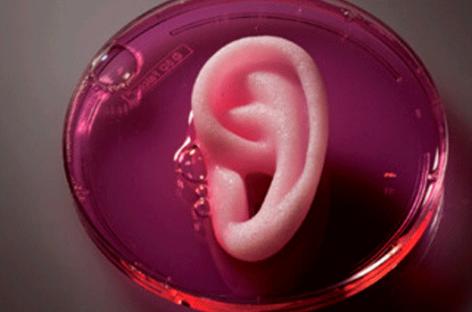 Bioimpresión en 3D, lo que la medicina nos depara