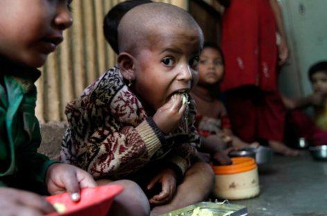 Un mundo sin hambre