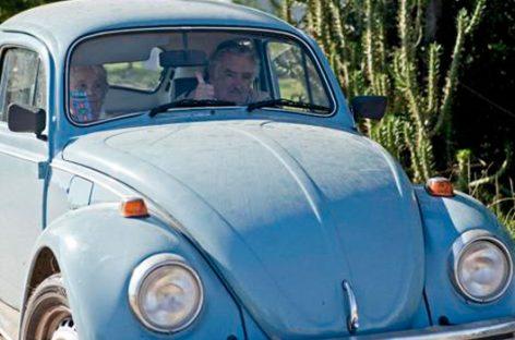 El escarabajo azul como símbolo de austeridad