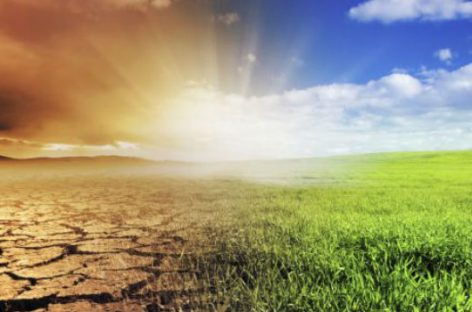 Naomi Klein y su lucha contra el cambio climático